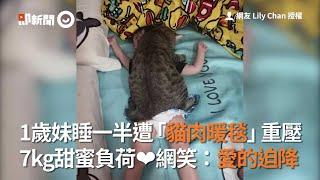 1歲妹睡一半遭「貓肉暖毯」重壓~7kg甜蜜負荷❤網笑:愛的迫降|寵物|亂動|圓滾滾|看新聞