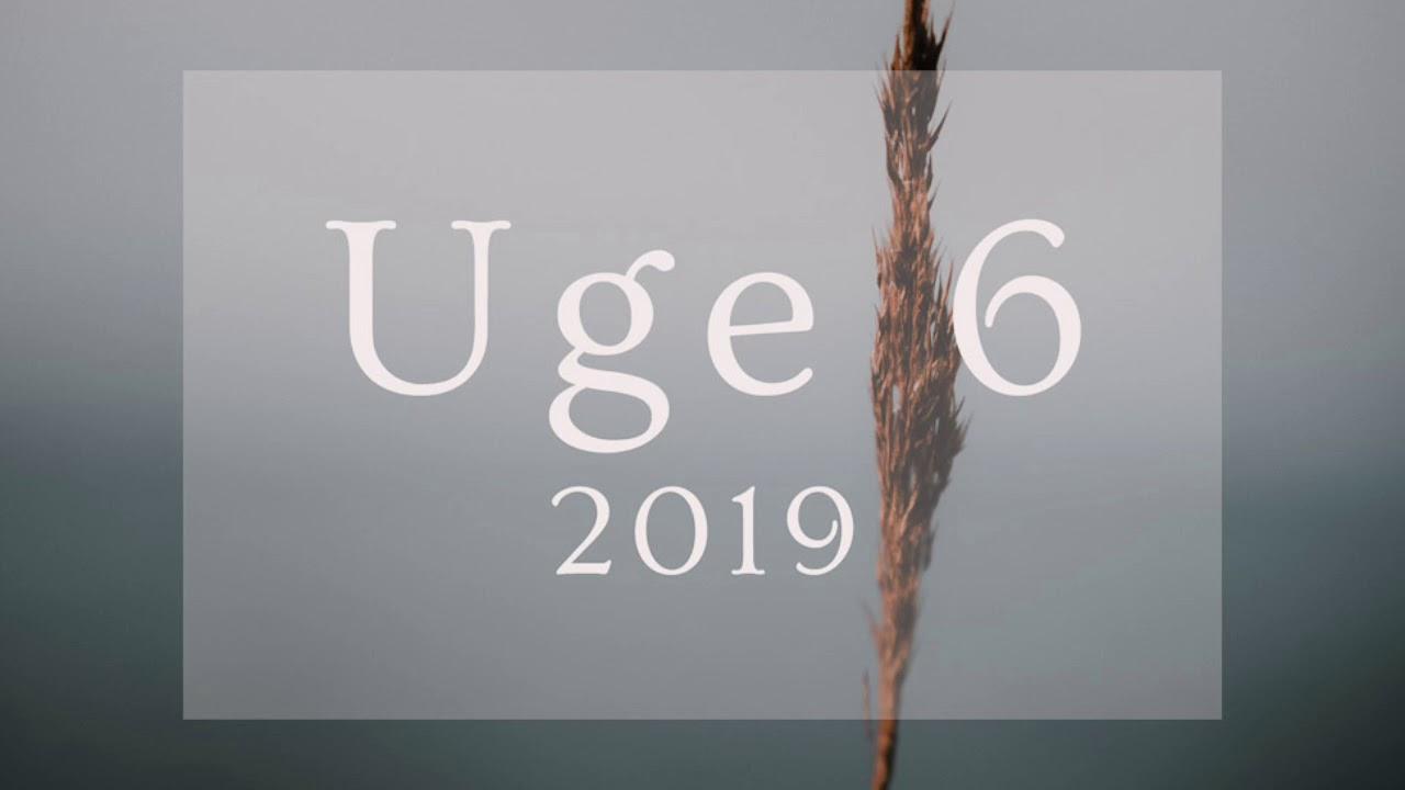 Uge 6 2019 Numerologisk Prognose Youtube