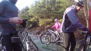 Off Road On Mountain Bike In Tangham Forest