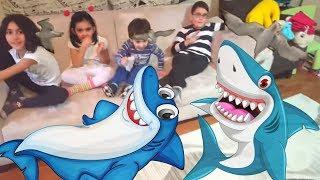 köpek balığı - shark gaming