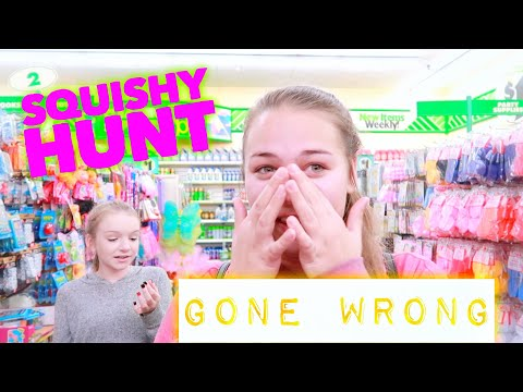 SQUISHY HUNT AT THE DOLLAR TREE GONE WRONG!!! | Bryleigh Anne