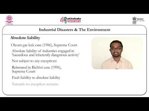 Industrial Disasters and the Environment  (Law)