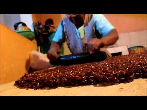 Ciudad Vieja - Ruta Gastronómica