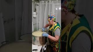 Сыр Маасдам в домашних условиях Полный и наглядный рецепт