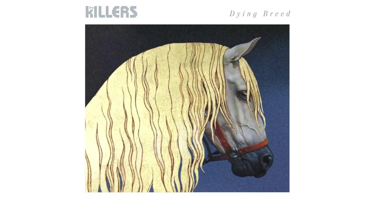 Arti Lirik dan Terjemahan The Killers - Dying Breed