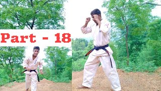 Online karate tranning part 18  double gedan mawashi geri kick  Shahabuddin karate