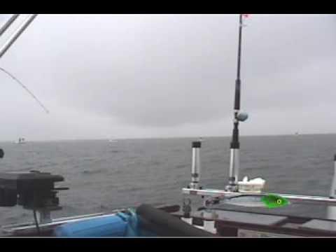 Salmon Fishing The Hog Farm Monterey For Big Chinook Tyee