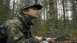 Pyynpillitys(Hazel grouse Hunting/ Bonasa bonasia-HD)