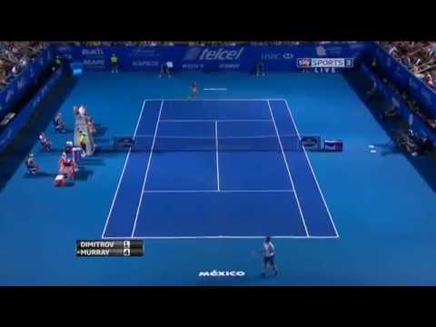 Grigor Dimitrov vs Andy Murray Acapulco 2014 Semifinal Highlights
