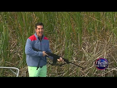 Jesse Watters Goes Snake Hunting In Florida Everglades