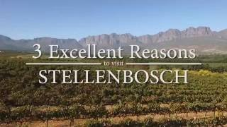 3 Excellent Reasons to Visit Stellenbosch