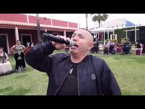 Nicolae guta live spania 2018