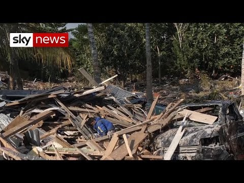 Indonesia earthquake: Victims beg for help with resources sh