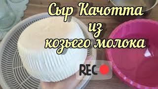 Рецепт Сыра Качотта из козьего молока настоящий сыр в домашних условиях Kachotta cheese