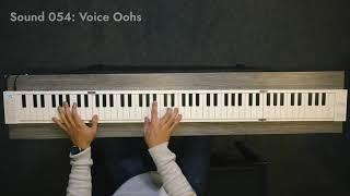 CARRY-ON Blackstar® Teclado Plegable FP88 88 Teclas 128 Sonidos MIDI USB video
