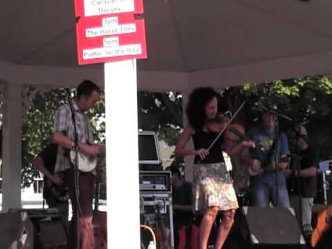 The Horse Flies - Road Kill - Clinton NY Art and Music Festival - 8/25/12