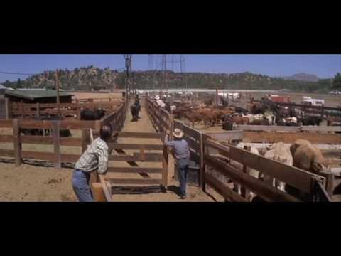 Junior Bonner  Western 1972  Steve McQueen, Robert Preston & Ida Lupino
