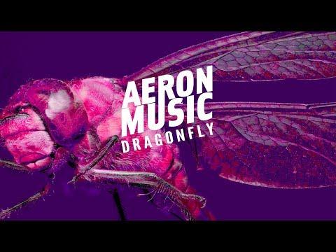 AeronMusic  Dragonfly Dragonfly EP