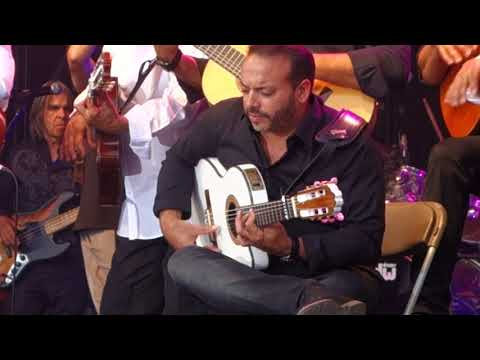 The Original Gypsies Of Carmargue (Ex. Gipsy Kings)