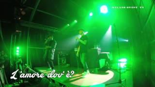 Download Bassi Maestro live @ Magnolia - L'amore dov'è?  feat Ghemon MP3 song and Music Video