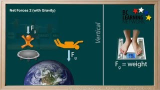 BCLN - Physics - Net Forces with Gravity