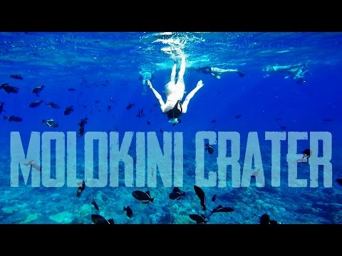 Free Diving at Molokini Crater