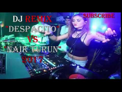 Despacito Vs Naik Turun New  Edan Remix