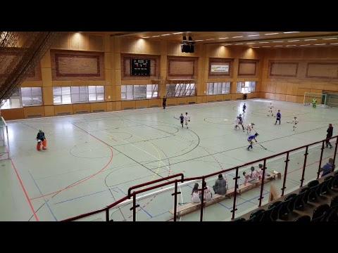 Austrijsko prvenstvo U12 Post SV - HK Zelina