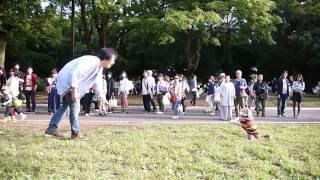 El tierno perrito beagle que aprendió a ser arquero.