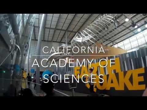 SF Trip 2016- California Academy of Sciences