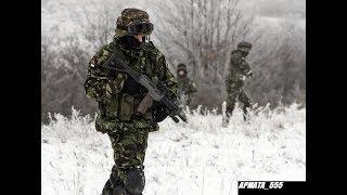"""Kako Vojska Srbije treba da izgleda da bi bila vojna """"sila""""?! thumbnail"""