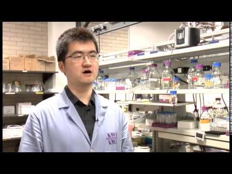 Northwestern University researchers on synthetic biology
