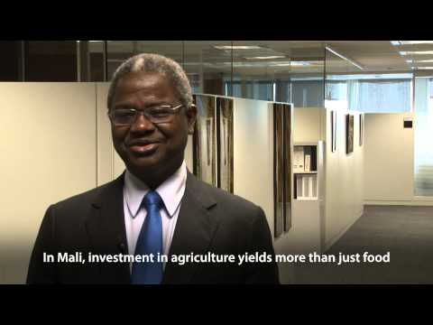 Investment in Agriculture and Infrastructure: Why IDA Matters for Mali