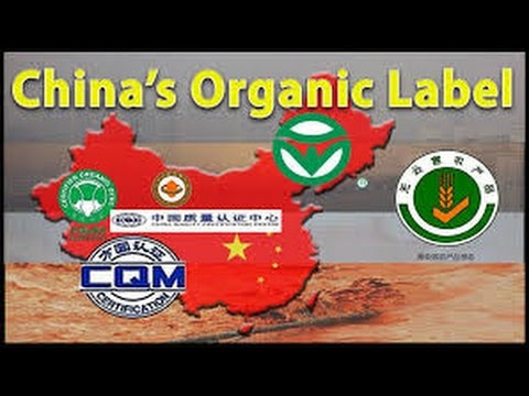 Organic vegetables in China: really?