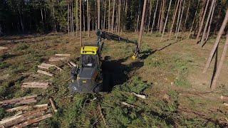 Ponsse BEAR harvester 8w  in Forest .