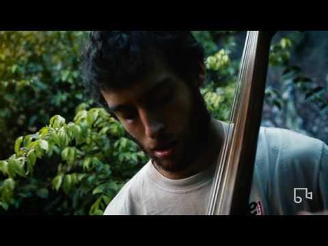 Lalo Alemán - Se Va - Bim Bom Records #20