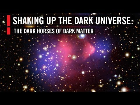 Shaking Up the Dark Universe: The Dark Horses of Dark Matter