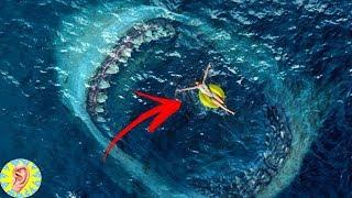 Dünyanın En BÜYÜK ve GÜÇLÜ 5 Köpekbalığı