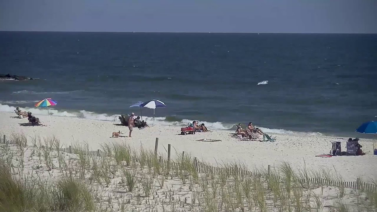 Beach Haven Long Island Surf Cam