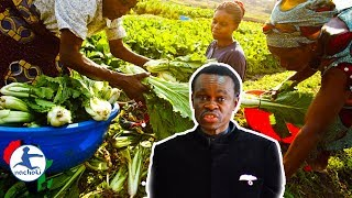 Baixar True African Revolution Only Achievable if Africa Can Feed Itself - PLO Lumumba