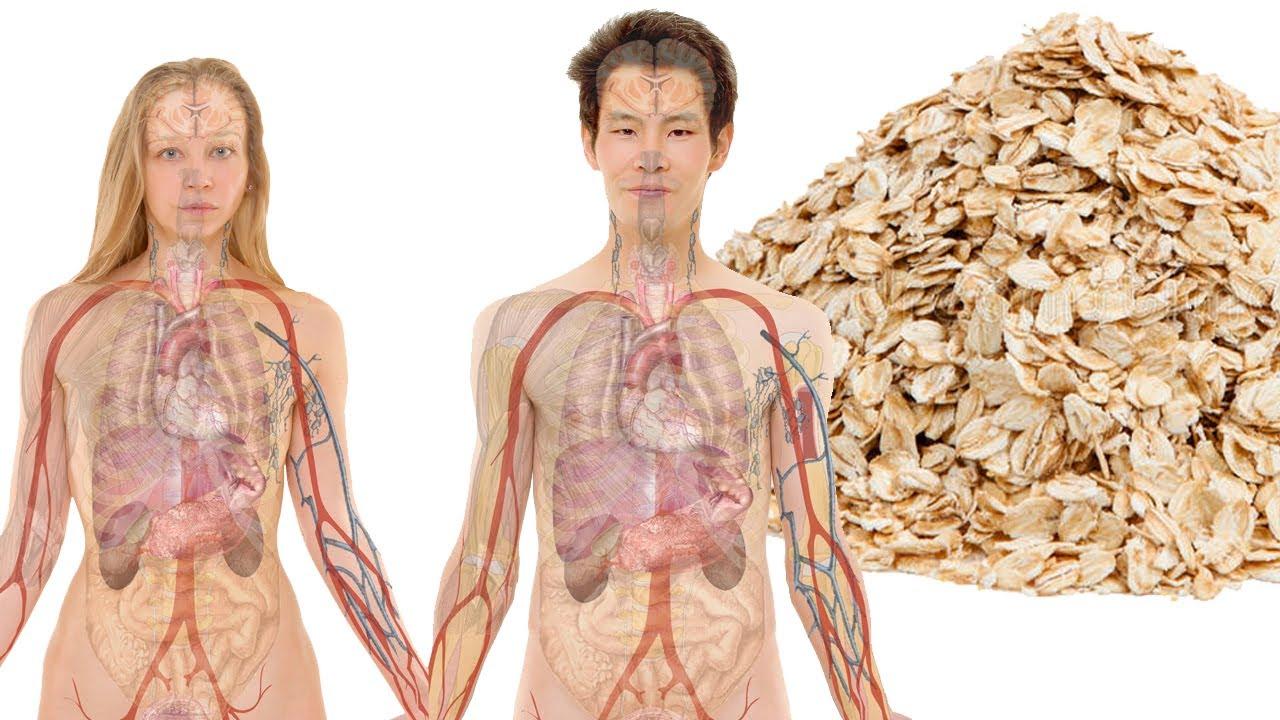 ЧТО БУДЕТ, если ВЫ НАЧНЕТЕ есть ОВСЯНКУ | отруби для похудения калорийность