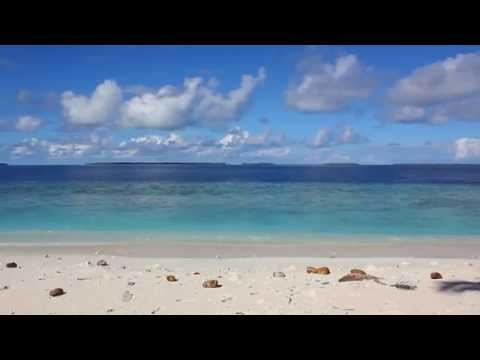 Ile Vache Marine Bird Habitat Restoration Project Reconnaissance HD