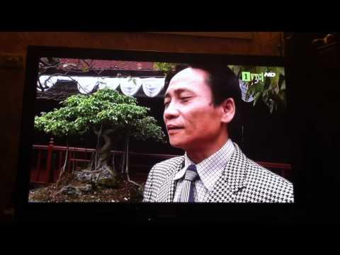 chuyen gia phong thuy Quang Minh 2.MOV