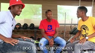 Bafana Ba - Dog Training Botswana AD