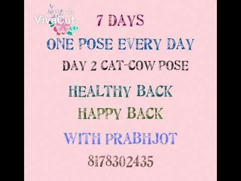 day 2 cat cow pose for happy back  youtube