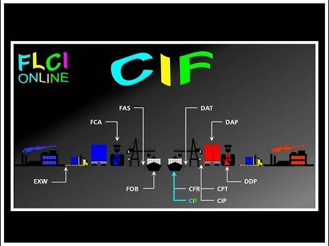 CIF Cost Insurance Freight | Coût Assurance et Fret | QCM Incoterms | Quizz Import Export