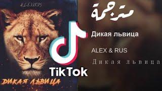 أغنية تيك توك حركة الأسد🦁 ALEX & RUS - Дикая львица  مترجمة للعربية