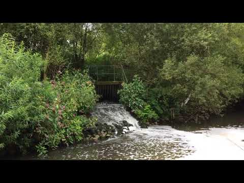 River Medlock Pollution - Failsworth Water Treatment Works
