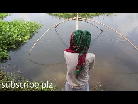 castnet fishing || গ্রাম এলাকায় ধম্ ঝাল দিয়ে ছোট ছোট অনেক মাছ শীকার কীভাবে করে 🐟🐟