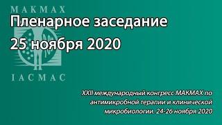 Пленарное заседание 25 ноября 2020